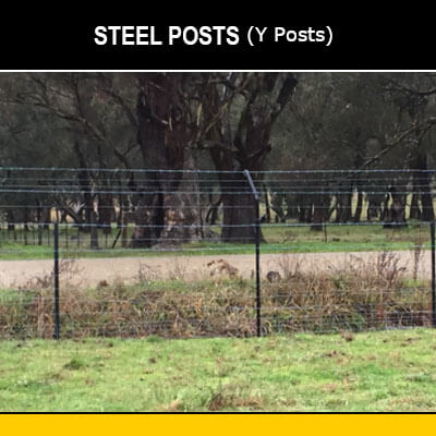 Steel Posts (Star Pickets)